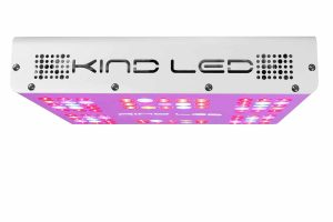 Kind LED XL300 grow light